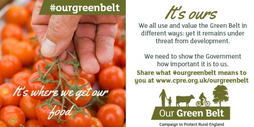 Our Green Belt
