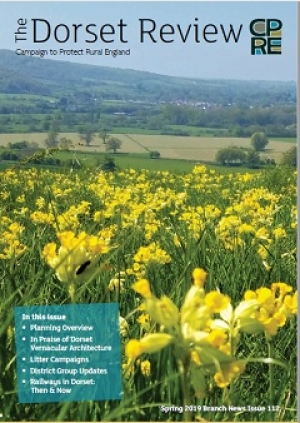 Cover page Cowslips on Hod Hill, Blandford Forum, Dorset