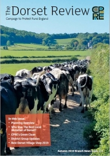 Friesian herd going back for milking at Hilton, North Dorset