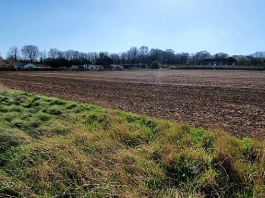 Proposed Site of 70 Houses in Charlton Marshall