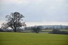 Why You Should Object To Giant Solar Farm In Blackmore Vale