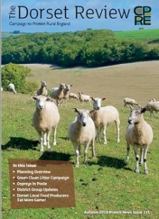 Cover page Sheep on Downland in West Dorset