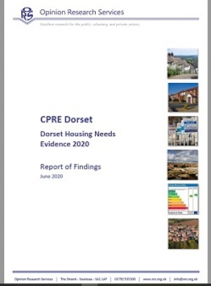 Dorset Housing Needs Evidence Report